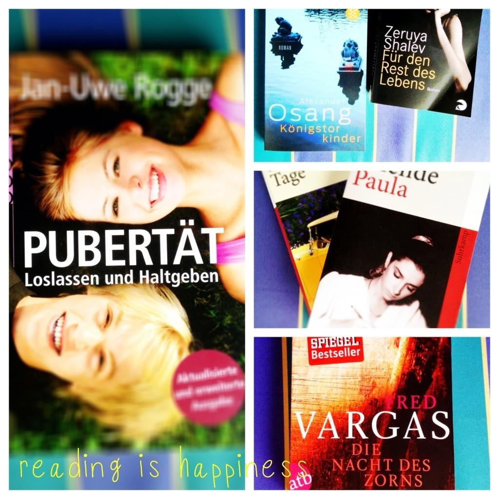 book_love_reizeit_lesezeit_lovely_books.jpg