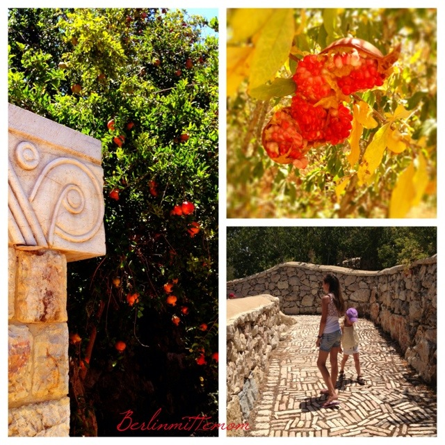 Ein Yael, Ein Ya'al, Jerusalem mit Kindern, Gärten, Ausgrabung, Kinder, Israel, Reisetipps, Granatapfel, Living Museum