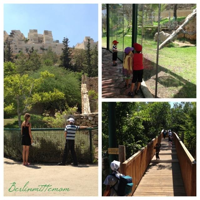 Jerusalem Biblical Zoo, Jerusalem mit Kindern, Israel, Reisetipps, Zoobesuch, Kinder