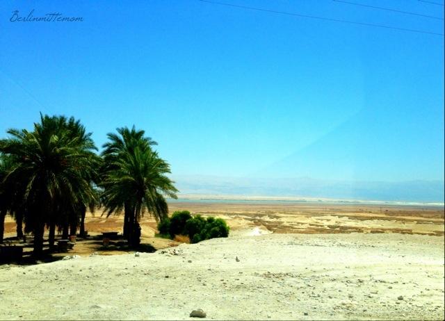 mit Kindern ans Tote Meer, Westbank, Wüste, Israel