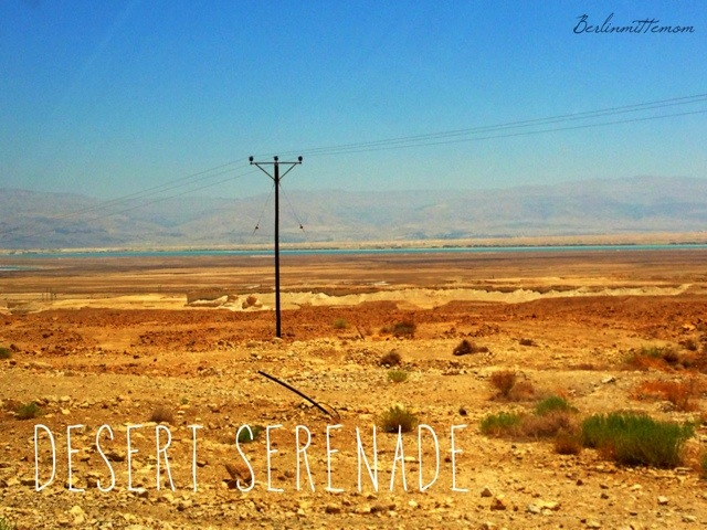 Westbank, desert serenade, durch die Wüste, mit Kindern ans Tote Meer, Israel