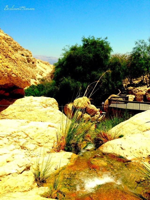 Ein Gedi, Wasserfälle, Oase in der Wüste, mit Kindern ans Tote Meer