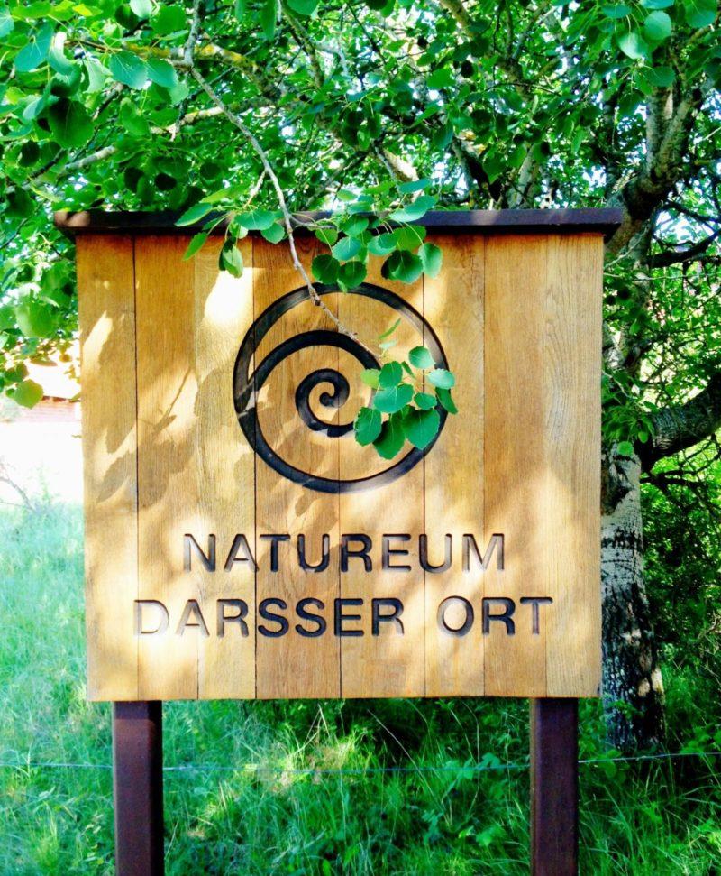 Natureum Darßer Ort | berlinmittemom.com