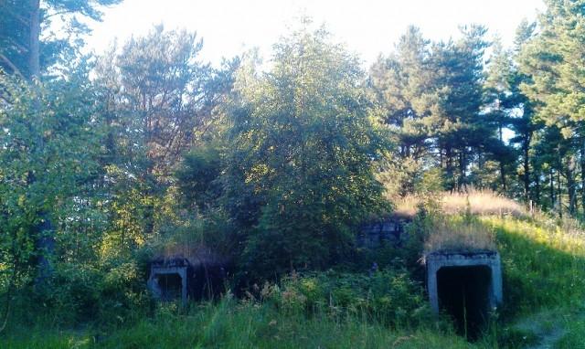 Sommerliebe, Reisemeisterei, Estland