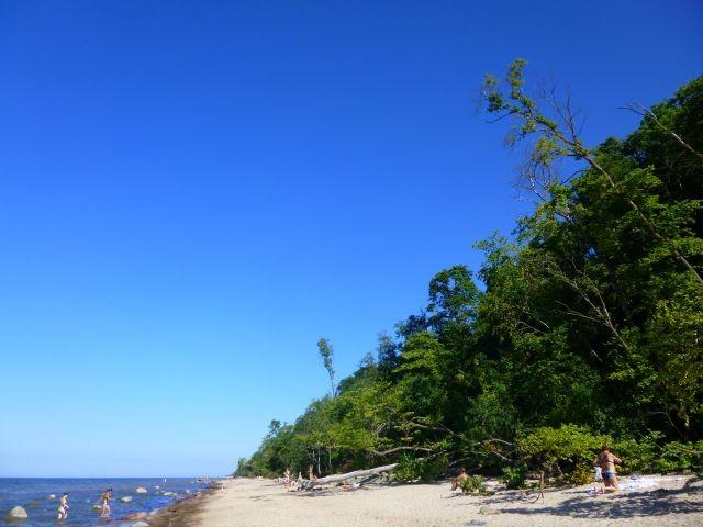 Sommerliebe, Estland, Reisemeisterei