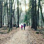 liebste freunde, ein fest und der winterwald ::: wochenende in bildern