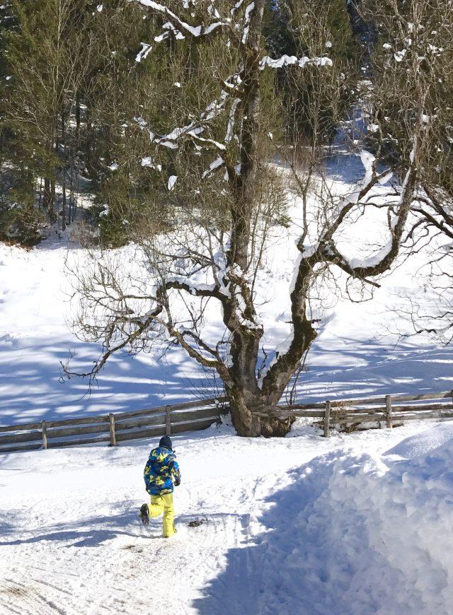 Winterferien mit Kindern in Österreich