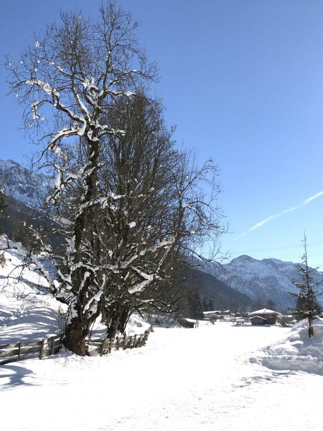 Winterferien mit der Familie, Kleinarl in Österreich