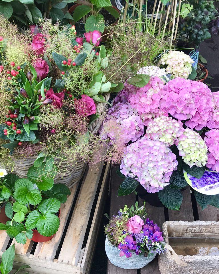 Blumenstand am Kollwitzmarkt | Berlinmittemom.com