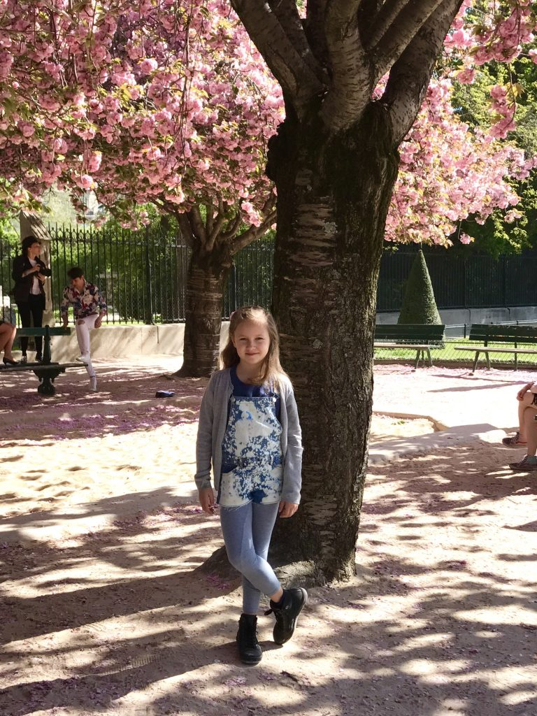 Kirschblüte in Paris | Berlinmittemom.com