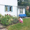 Darss, Ostsee, Familienurlaub