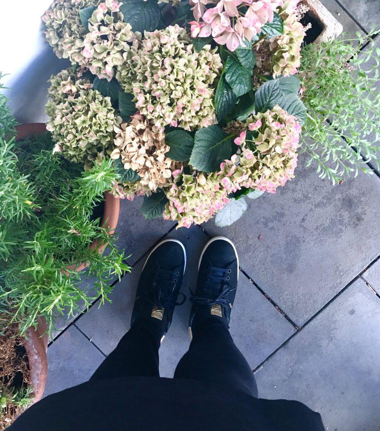 Herbst auf dem Balkon