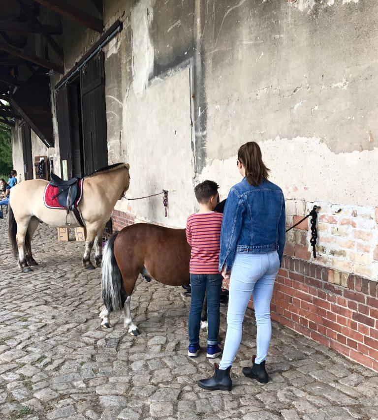 Pferdekultur Gut Hobrechtsfelde | berlinmittemom.com