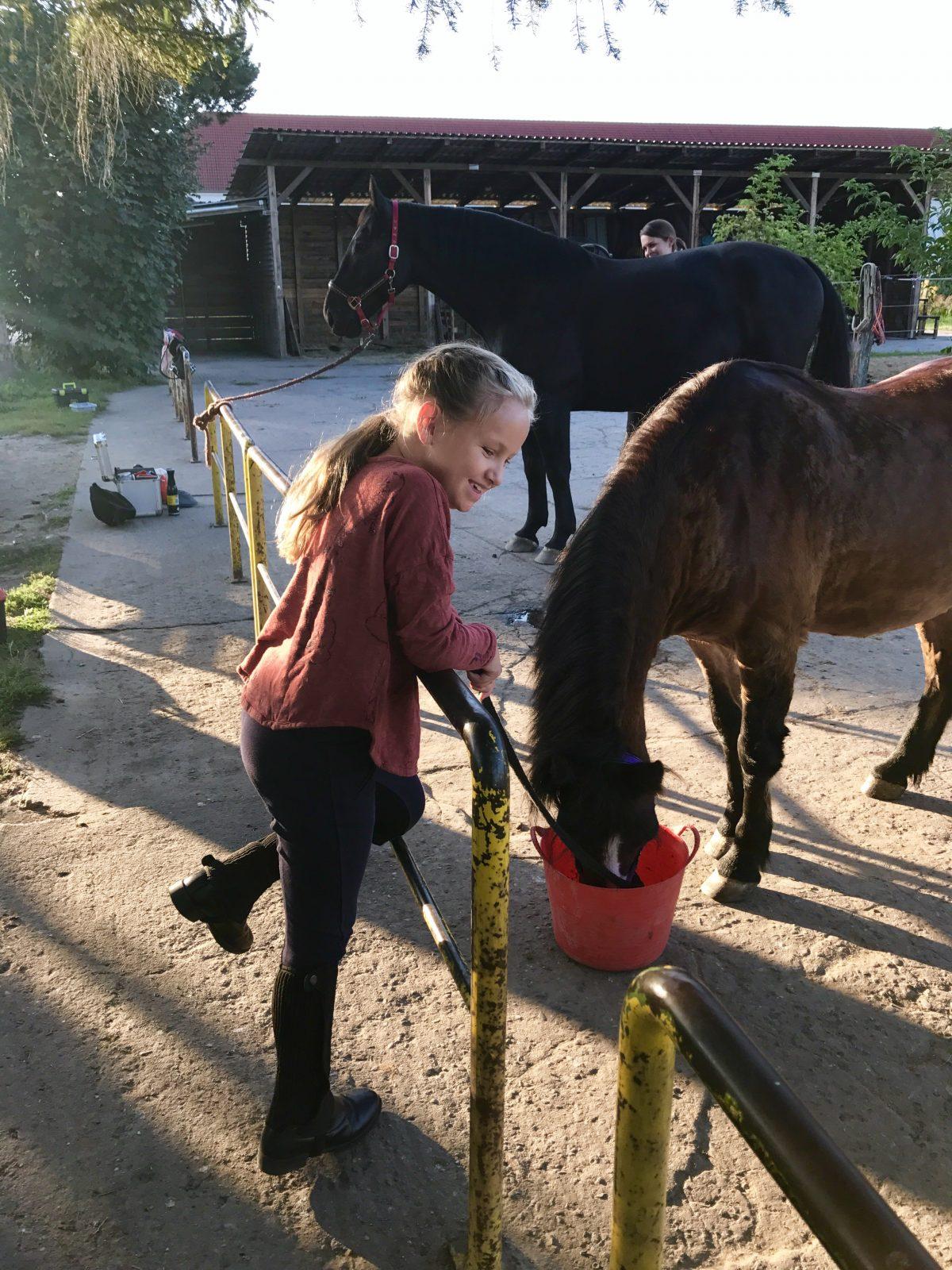 Pferdeliebe mit den Berlinmittekids   berlinmittemom.com
