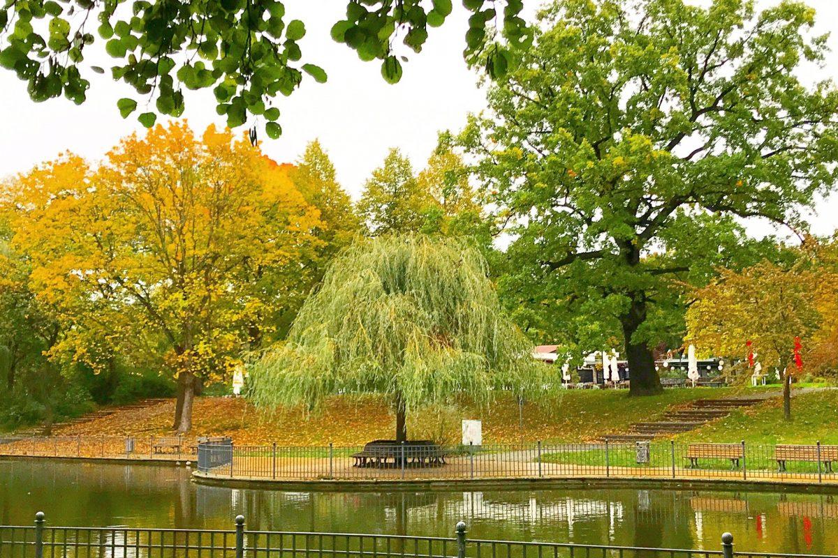 Herbst im Park, Berlin | berlinmittemom.com