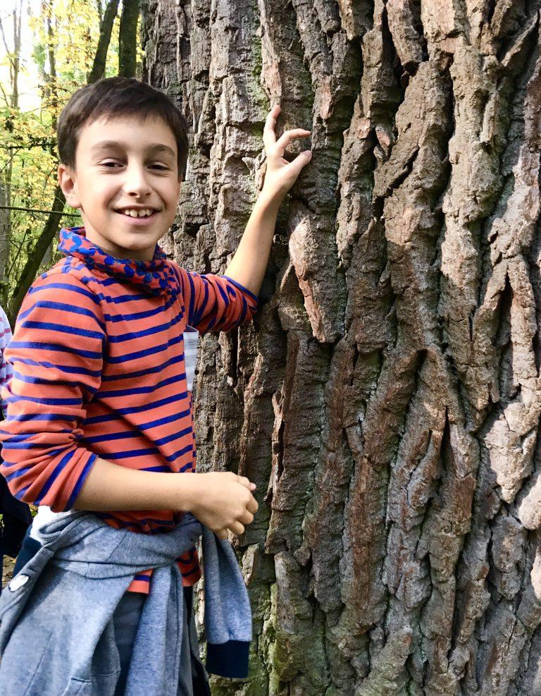 Der dickste Baum im Wald | berlinmittemom.com