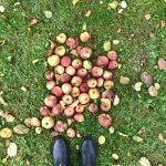 Herbstferienstart in der Eifel ::: Wochenende in Bildern