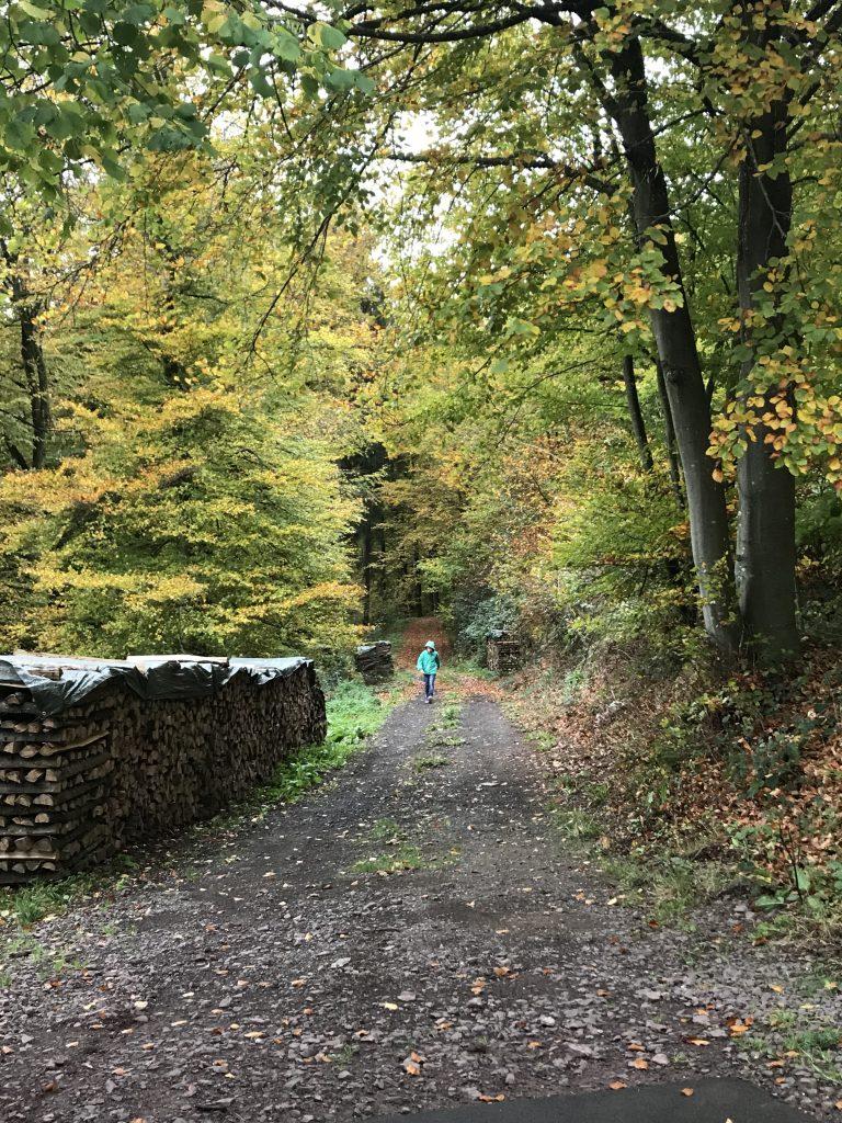 Waldspaziergang | berlinmittemom.com
