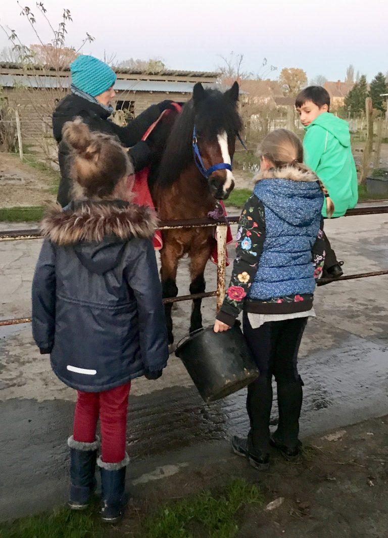 Pferdeglück | berlinmittemom.com