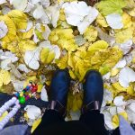 Lieblingsmoment im Herbst | berlinmittemom.com