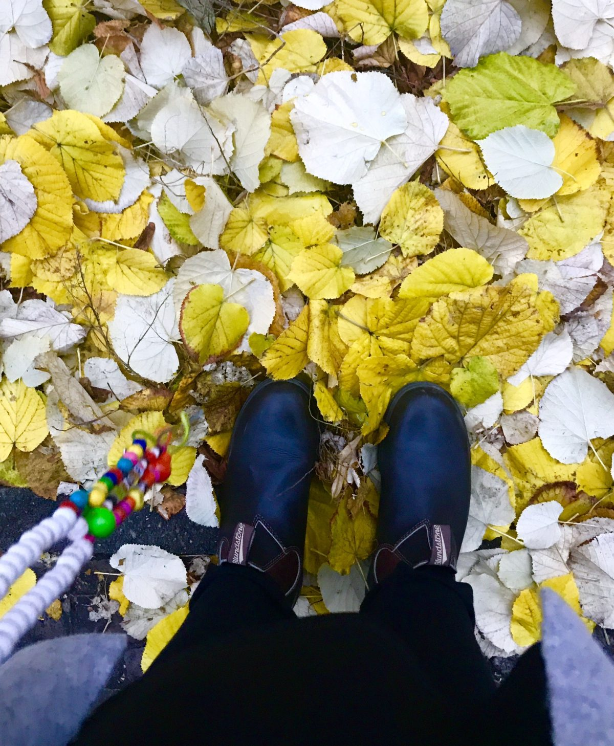 Lieblingsmoment im Herbst | berlinmittemom.com