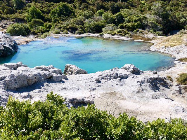 Blue Pool Te Puia, Rotorua | berlinmittemom.com