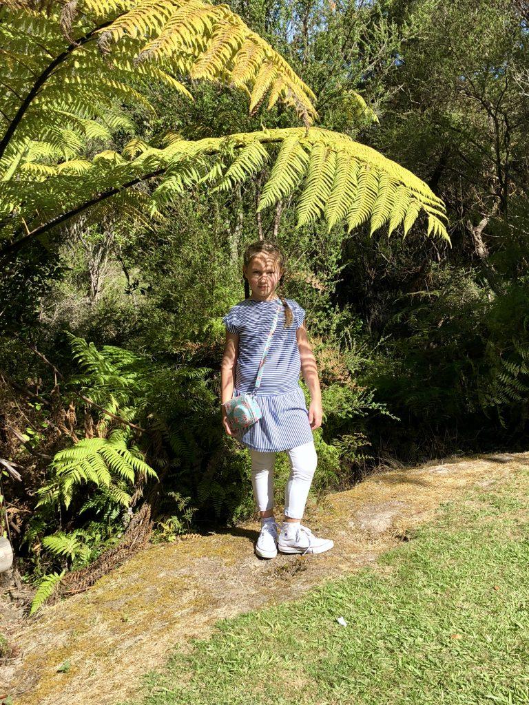 Riesenfarn in Rotorua, Neuseeland | berlinmittemom.com