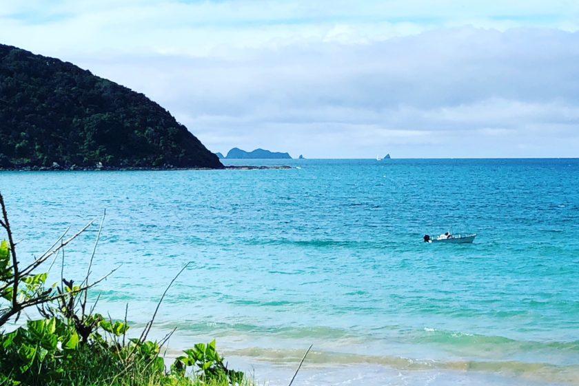 Bay of Islands, Neuseeland - berlinmittemom.com