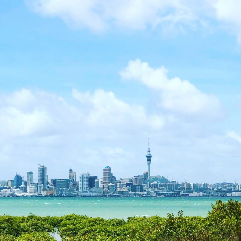 Auckland Skyline | berlinmittemom.com