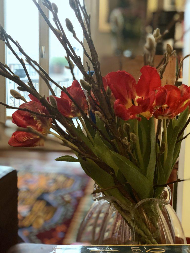 Tulpen | berlinmittemom.com