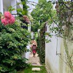 Gartenmomente in Berlin | berlinmittemom.com