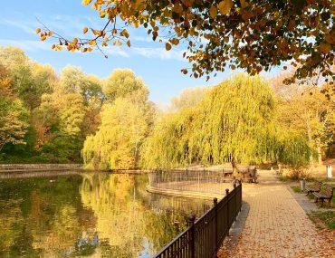 Herbstfarben im Volkspark Friedrichshain | berlinmittemom.com