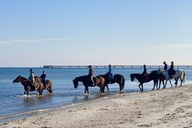 Reiten am Strand in Prerow | berlinmittemom.com