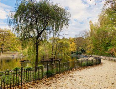 Herbstspaziergang im Park | berlinmittemom.com