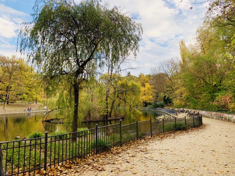 Herbstspaziergang im Park   berlinmittemom.com