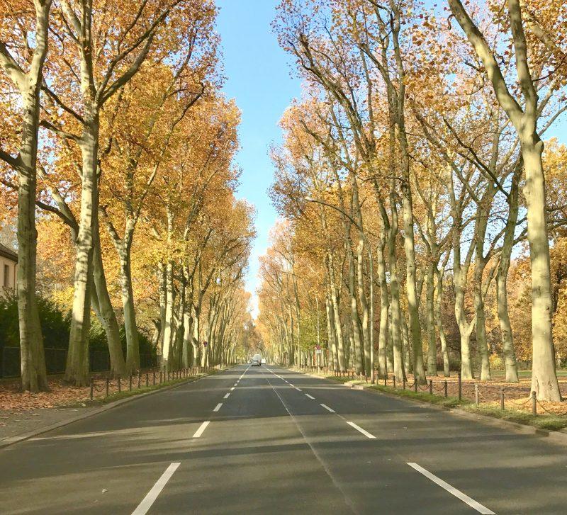 5 besten Hörbücher für lange Autofahrten | berlinmittemom.com