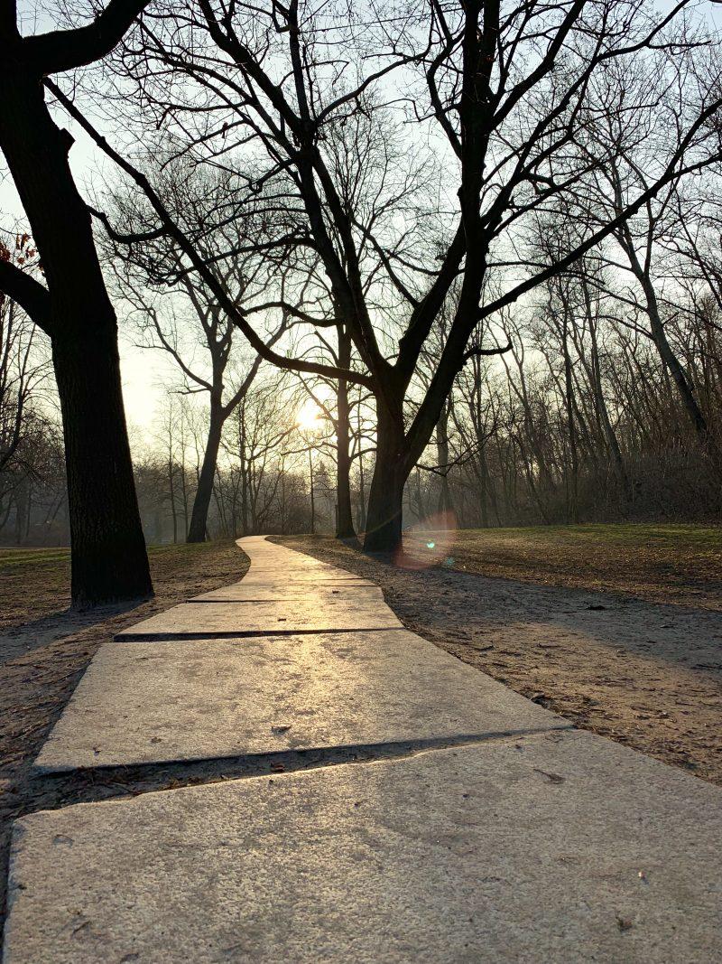 Morgens im Park | berlinmittemom.com