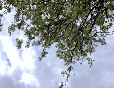 Wochenende in Bildern: sometimes it snows in april | berlinmittemom.com