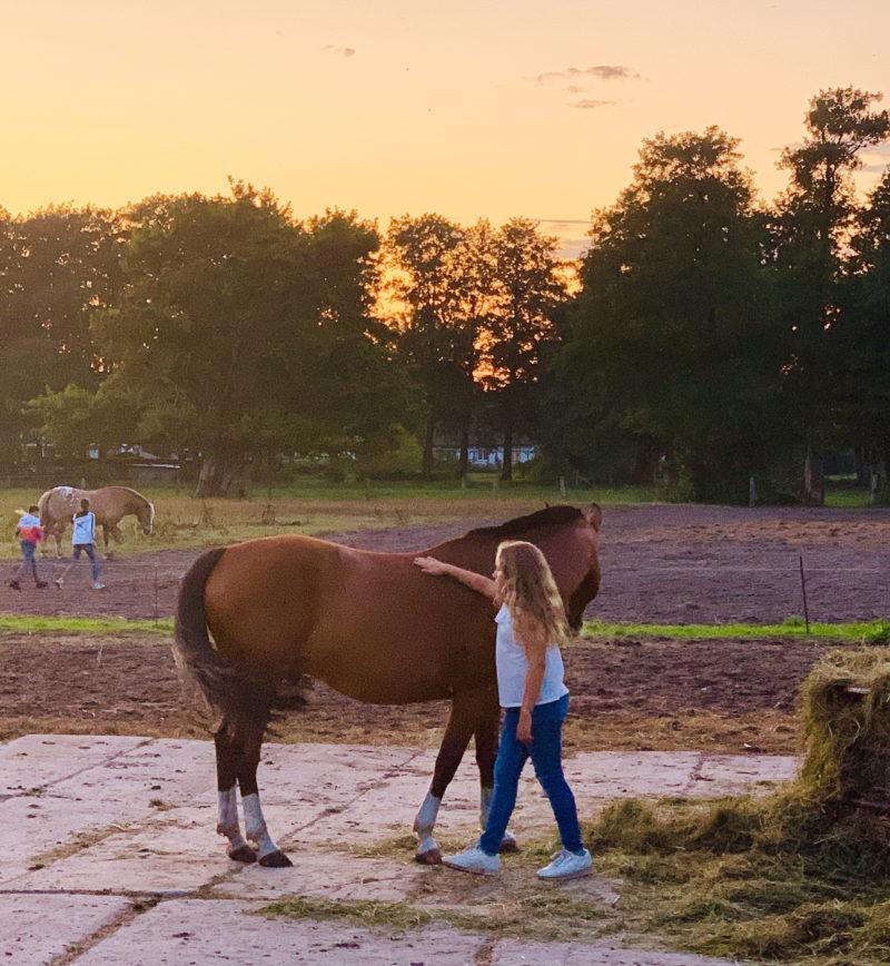 Pferdeliebe an der Ostsee | berlinmittemom.com