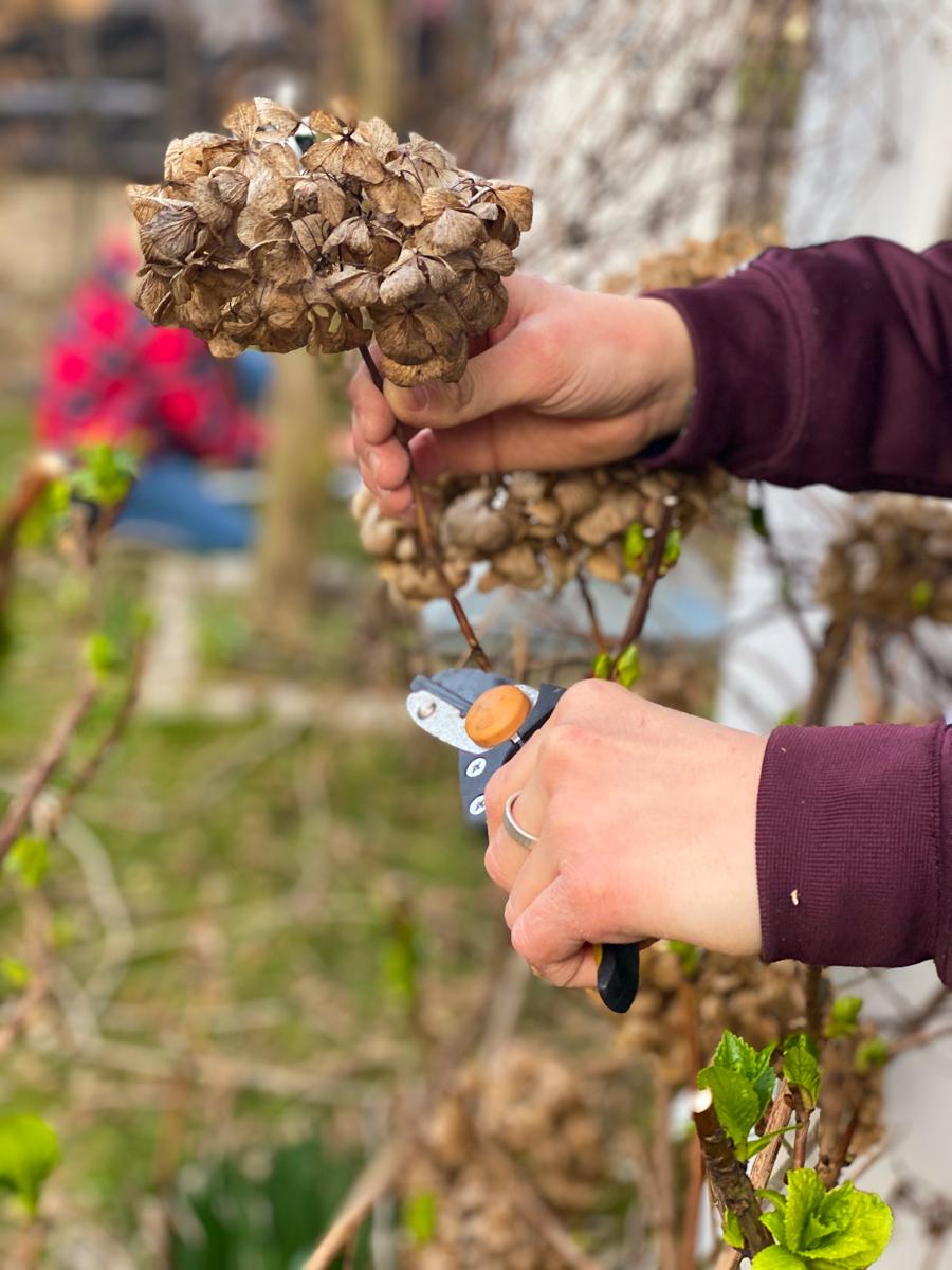 Gartenarbeit mit Kindern | berlinmittemom.com