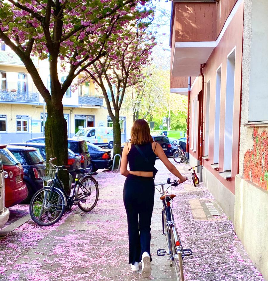 Kirschblüten Hanami Berlin | berlinmittemom.com