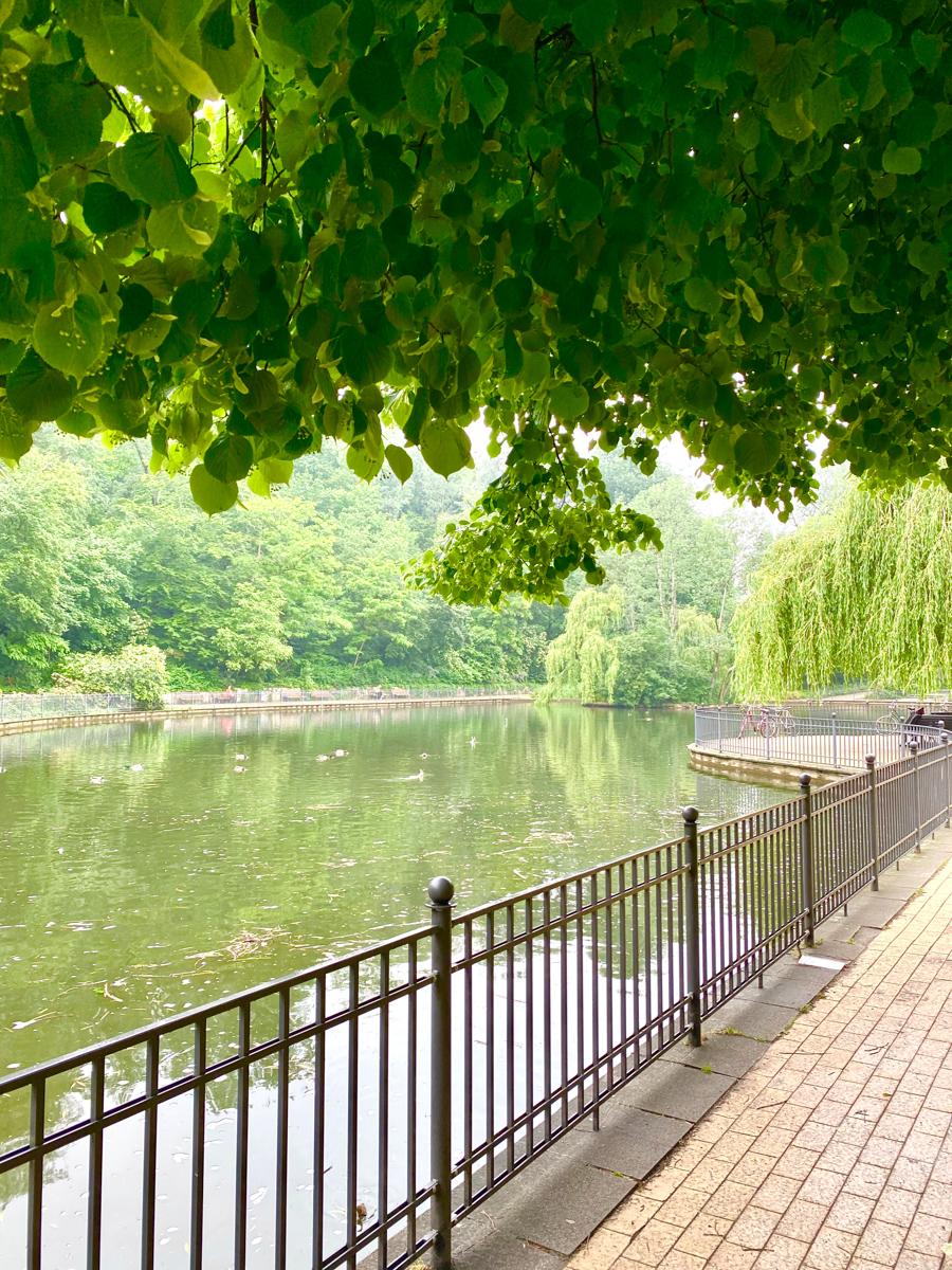 Ententeich, Volkspark Friedrichshain | berlinmittemom.com