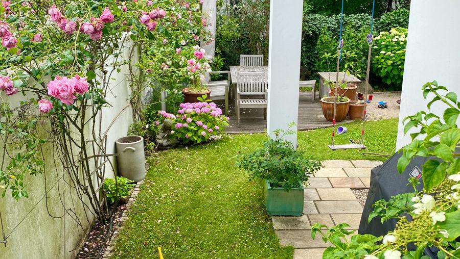 Never promised you a rosegarden | Freitagslieblinge am 19. Juni 2020