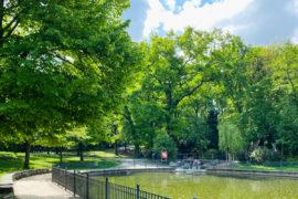 Freitagslieblinge: Leben im Park | berlinmittemom.com