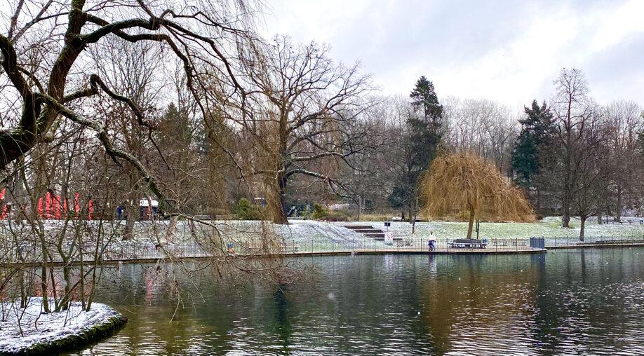 Remember all the days gone by | Freitagslieblinge am 15. Januar 2021