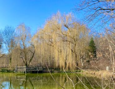 Freitagslieblinge: Frühling im Park | berlinmittemomm.com